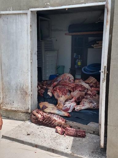 carne decomiso