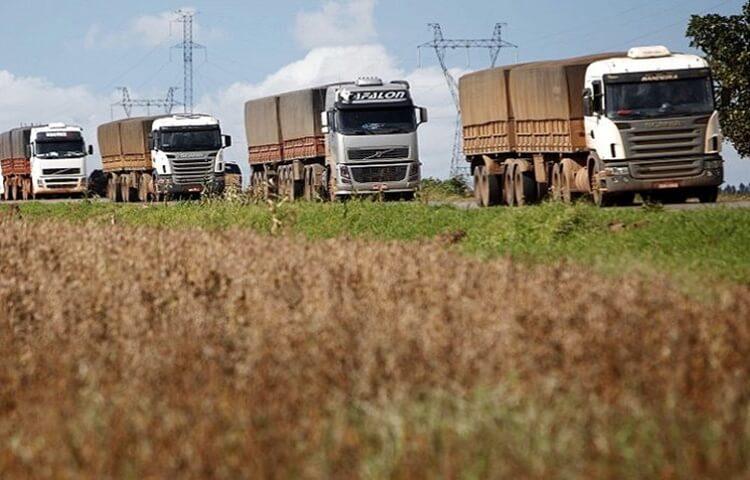 camiones Transporte Granos
