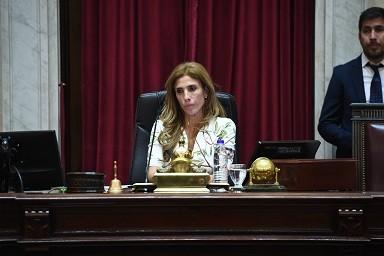 senadora claudia preside
