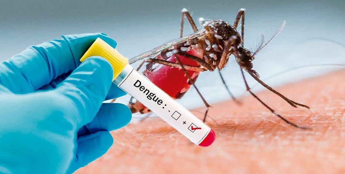 dengue positivo