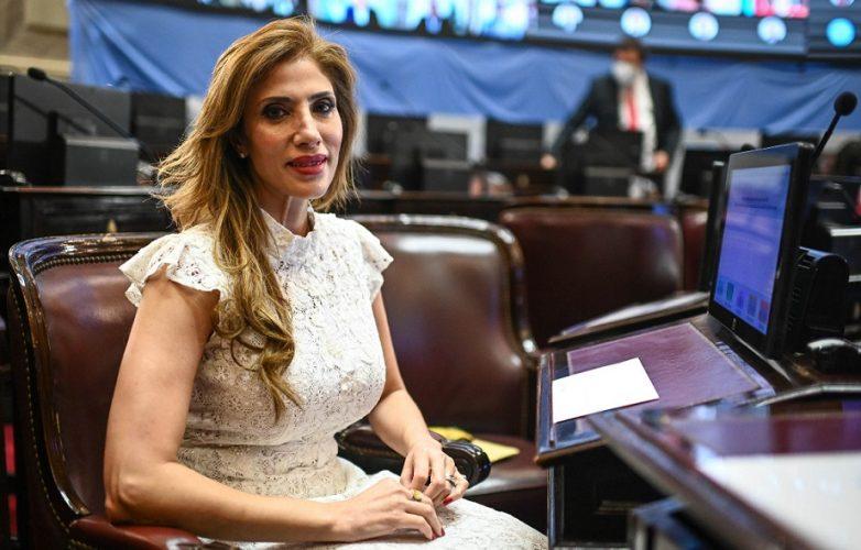 Claudia Ledesma senadora