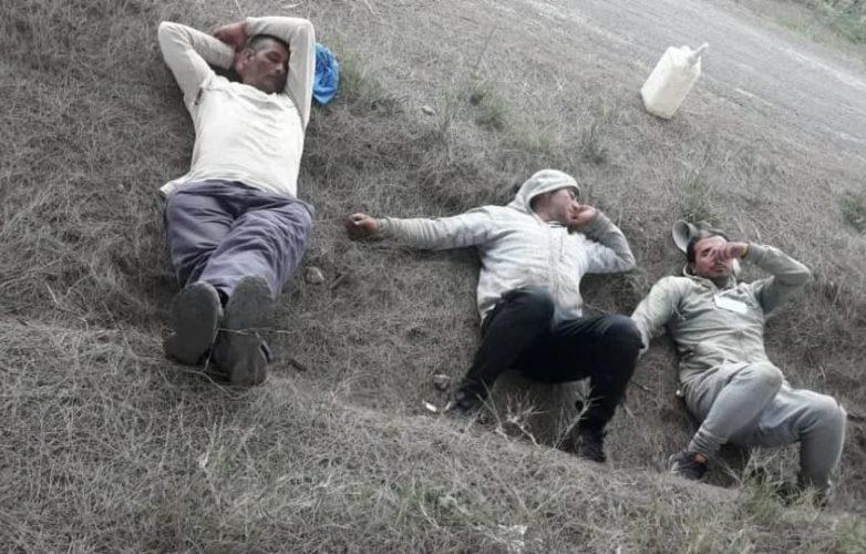 trabajadores golondrina